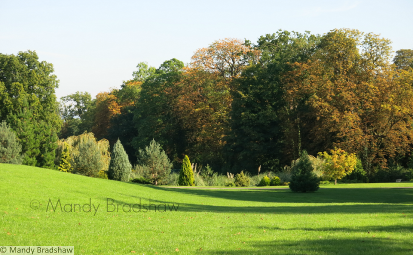 Highnam blazes into Autumn