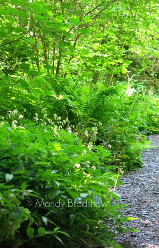 north wales gardens