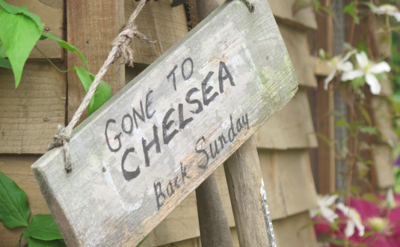 RHS Chelsea 2018 – the Cotswold connection