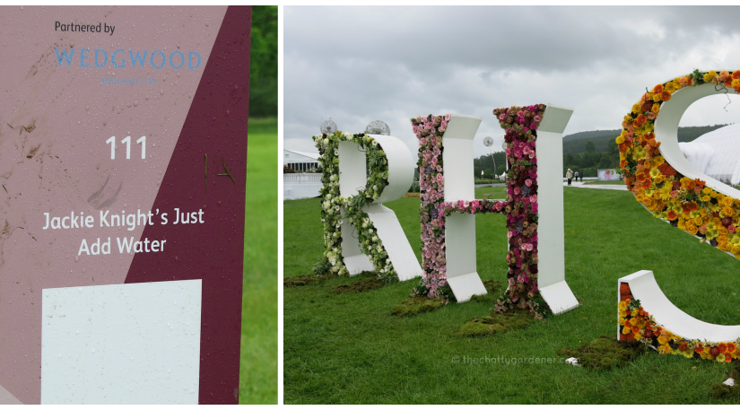 RHS Chatsworth 2017: a soggy start