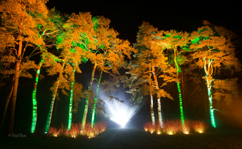 Westonbirt creates an Enchanted Christmas