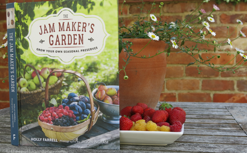 Review: The Jam Maker's Garden by Holly Farrell