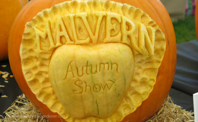 Malvern Autumn Show 2016