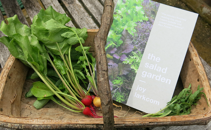 Review: The Salad Garden by Joy Larkcom