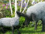 malvern spring festival