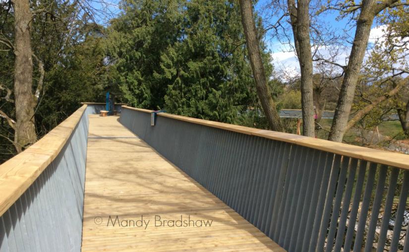 Treetop walkway opens